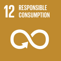 SDG12: Responsible Consumption and Production+Image