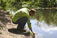 Environmental Ethics+image