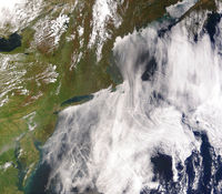 Climate Change+image