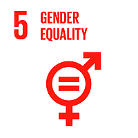 Ewha Womans University 2020 Research: SDG 5 - Group 1+Image