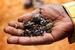 Conflict Minerals+image