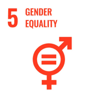Ewha Womans University 2021 Research: SDG 5 - Group 1+Image